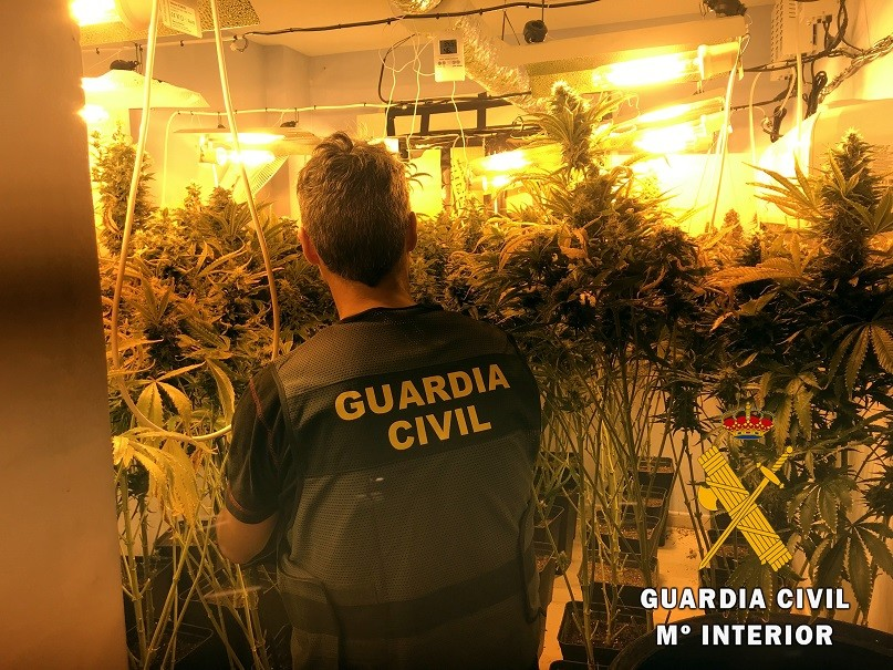 La Guardia Civil localiza e interviene un cultivo indoor de marihuana en Roquetas de Mar